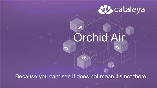 Orchid Air: Virtualization in communication and IT